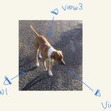 【機械学習】マルチビュー学習(Multi-view learning)入門